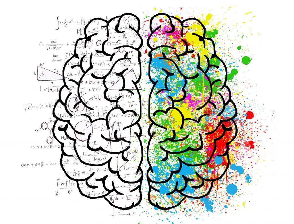 mind-factor.com-brain-2062057-Image-by-ElisaRiva-from-Pixabay